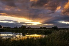 Sunset-over-the-duck-pond